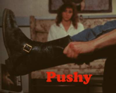 Pushy-Optimized